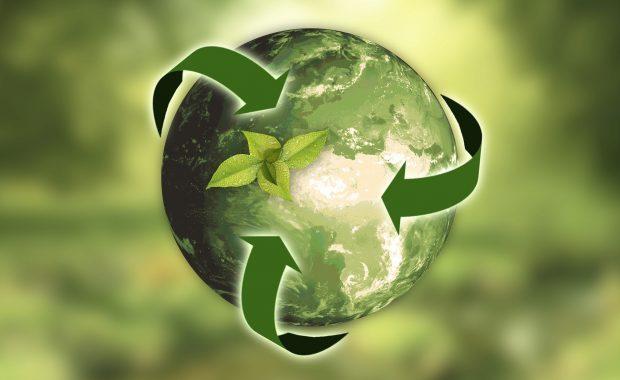 poupar dinheiro e o ambiente